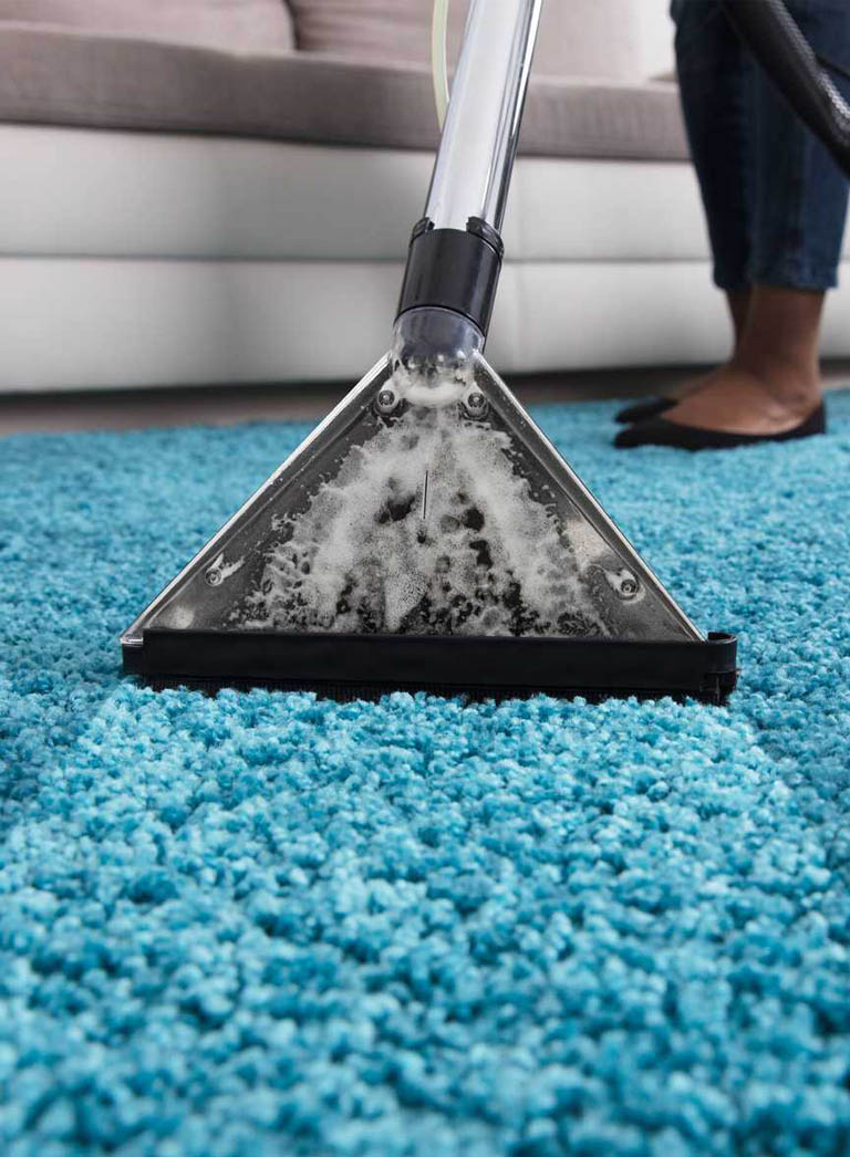 Carpet cleaning on a blue rug in living room