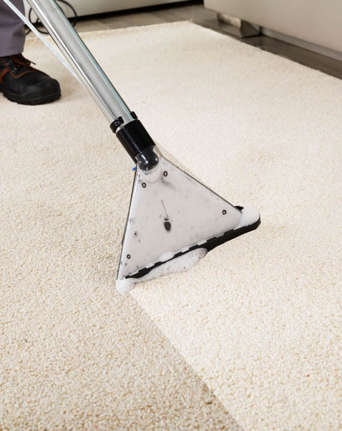 Cleaning cream carpet in living room